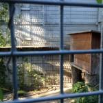 struttura centro recupero il PETTIROSSO